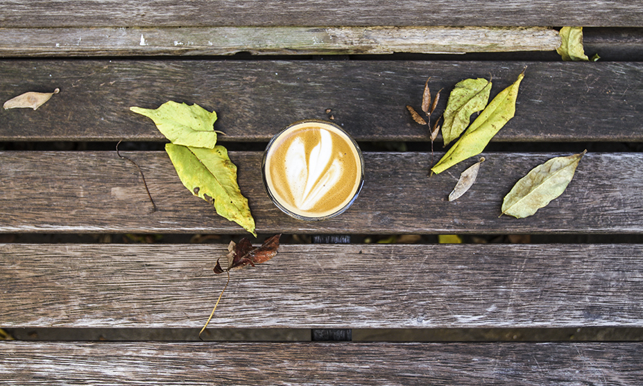 The 5 Best Coffee Shops in Louisville Right Now